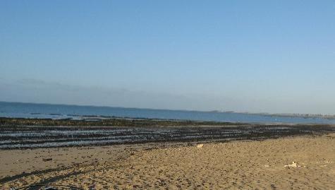 Surf report La Couarde - France (17) 2007-11-09 12:00:00