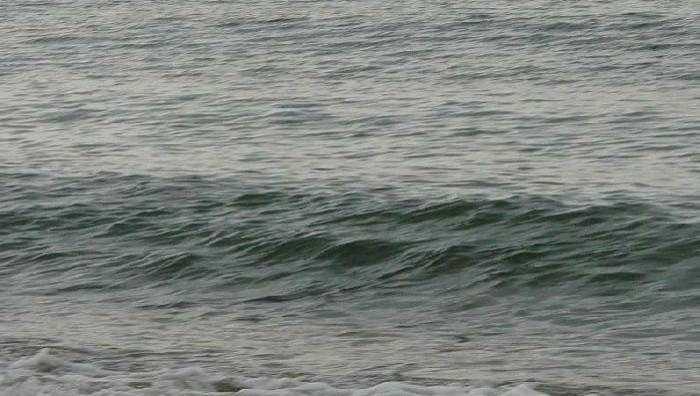 Surf report Palavas-les-Flots - Rive Droite - France (34) 2008-06-01 11:00:00