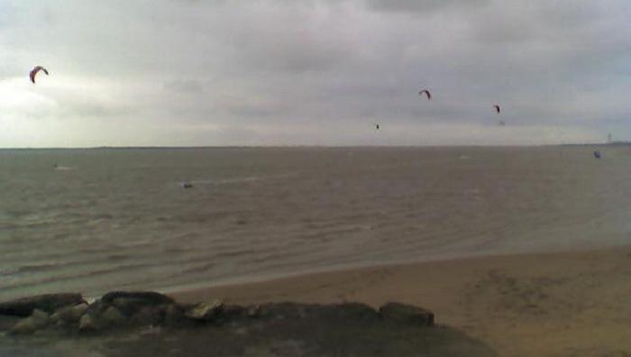 Wind report La Palmyre - Bonne-Anse - France (17) 2008-11-08 14:00:00