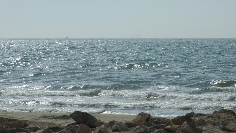 Surf report Palavas-les-Flots - Rive Droite - France (34) 2008-08-19 12:00:00