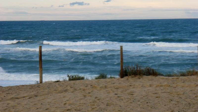 Surf report Seignosse - Les Bourdaines - France (40) 2008-11-01 12:00:00
