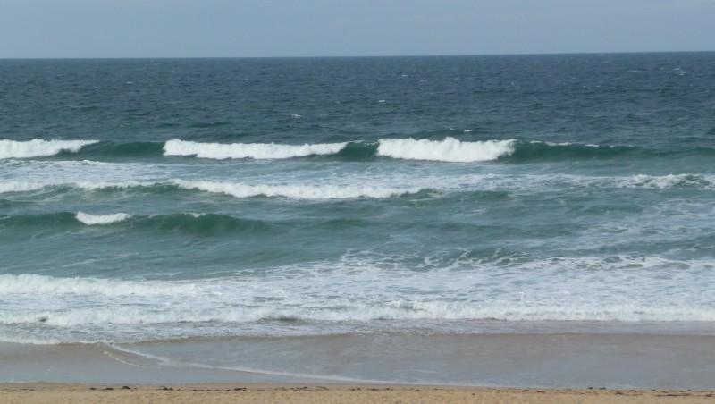 Surf report Cap-Ferret - Plage de L'Horizon - France (33) 2008-11-06 12:00:00