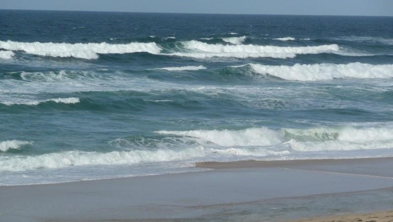 Surf report Cap-Ferret - Plage de L'Horizon - France (33) 2008-11-07 12:00:00