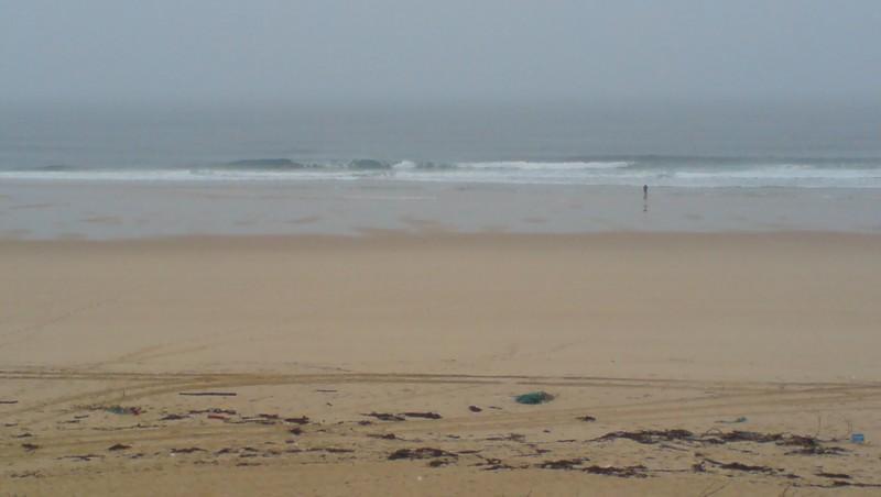 Surf report Cap-Ferret - Plage de L'Horizon - France (33) 2008-11-14 12:00:00