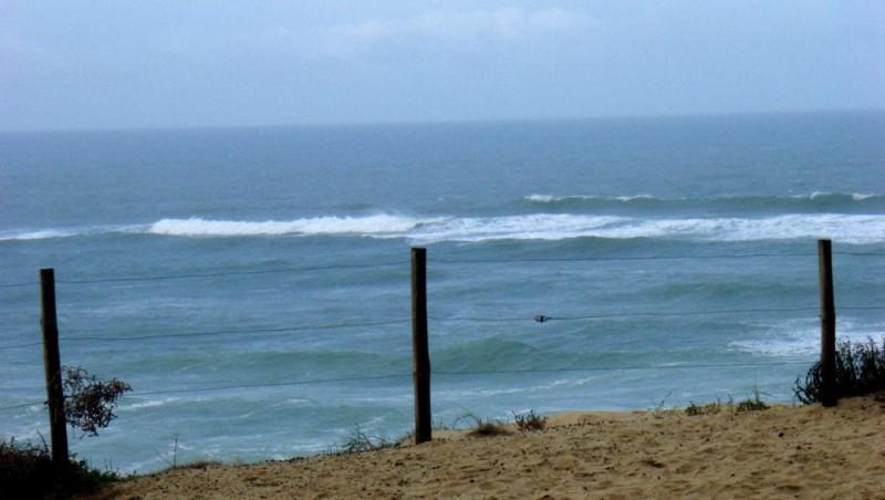 Surf report Seignosse - Les Bourdaines - France (40) 2008-11-22 12:00:00