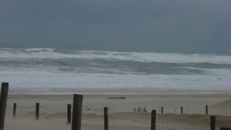 Surf report Seignosse - Le Penon - France (40) 2008-12-03 12:00:00