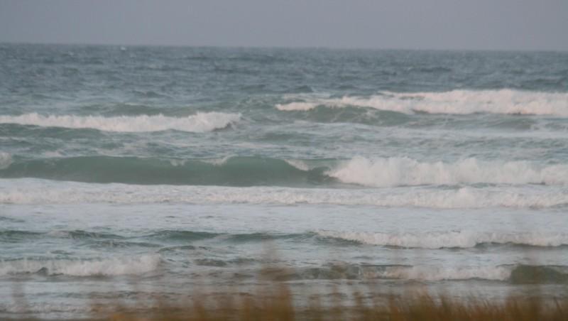 Surf report Plovan - France (29) 2008-12-03 12:00:00