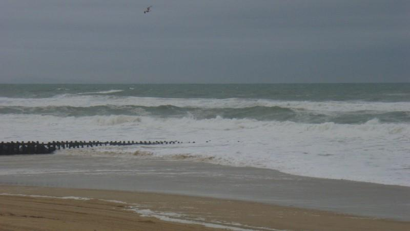 Surf report Seignosse - Le Penon - France (40) 2008-12-04 12:00:00