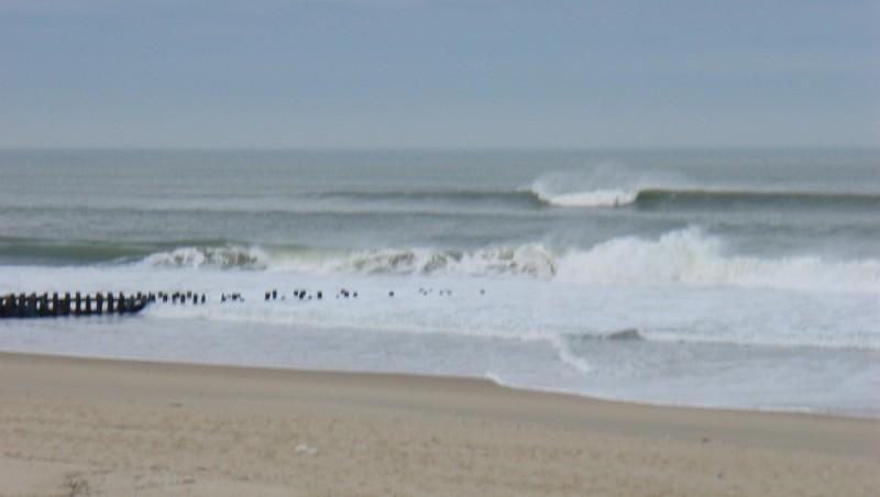 Surf report Seignosse - Le Penon - France (40) 2008-12-08 12:00:00