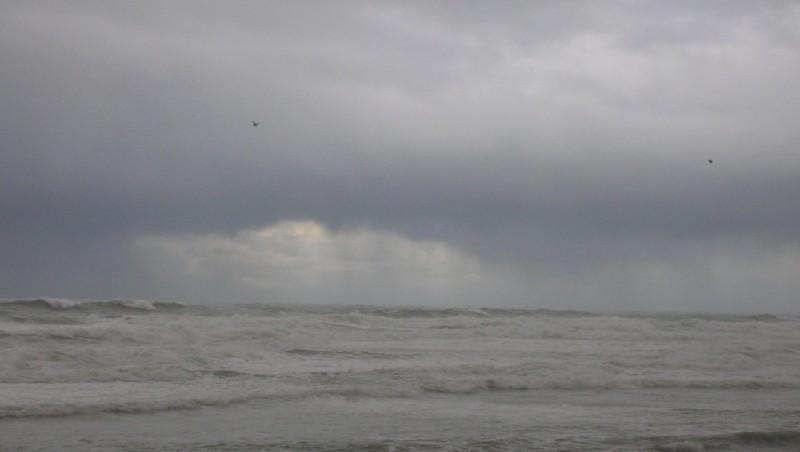 Surf report Biarritz - Grande Plage - France (64) 2008-12-14 12:00:00