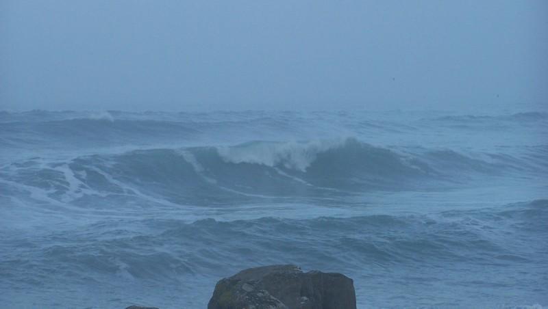 Surf report La Torche - France (29) 2008-12-19 12:00:00