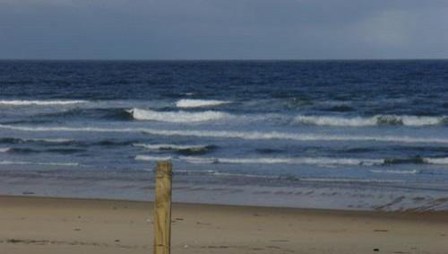 Surf report Seignosse - Les Bourdaines - France (40) 2008-04-14 12:00:00