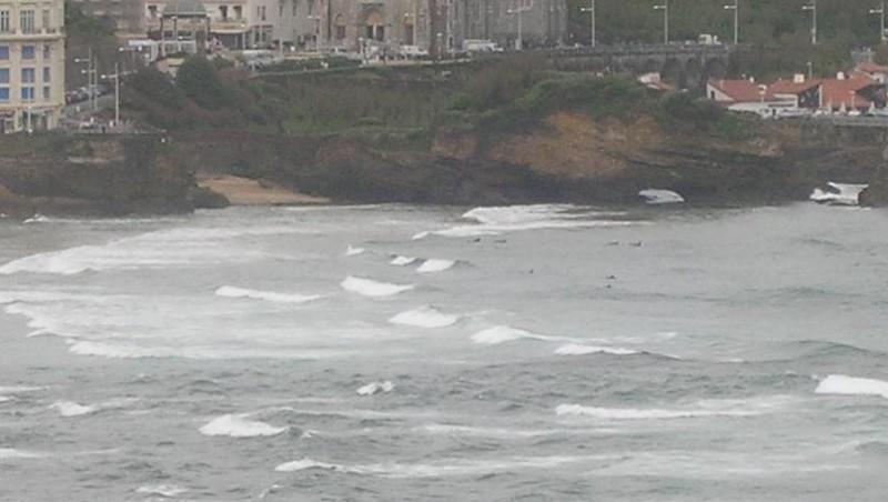 Surf report Biarritz - Grande Plage - France (64) 2008-04-17 12:00:00
