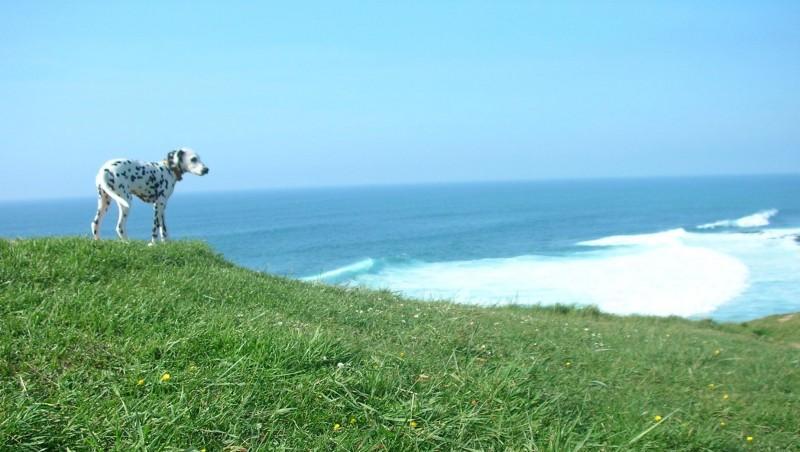 Surf report Sainte Barbe - France (64) 2008-04-24 12:00:00