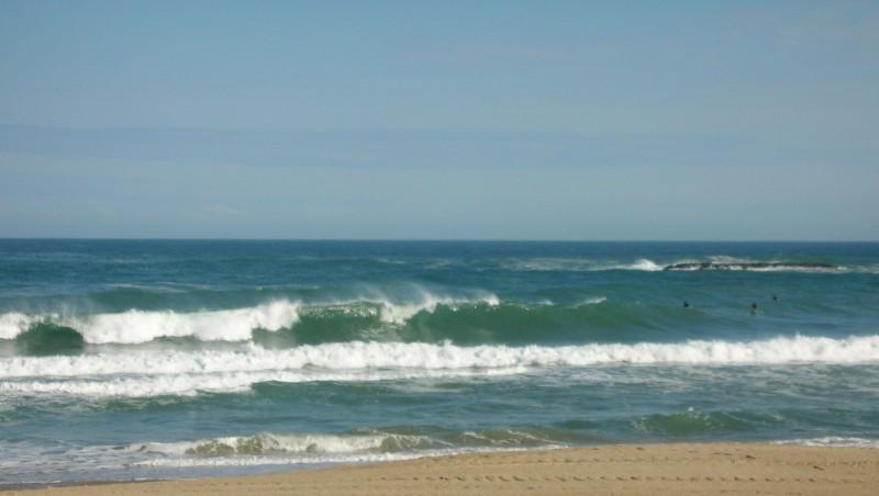 Surf report Biarritz - Grande Plage - France (64) 2008-04-29 12:00:00