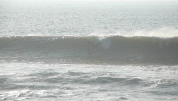 Surf report Bud Bud - France (85) 2009-01-11 15:00:00