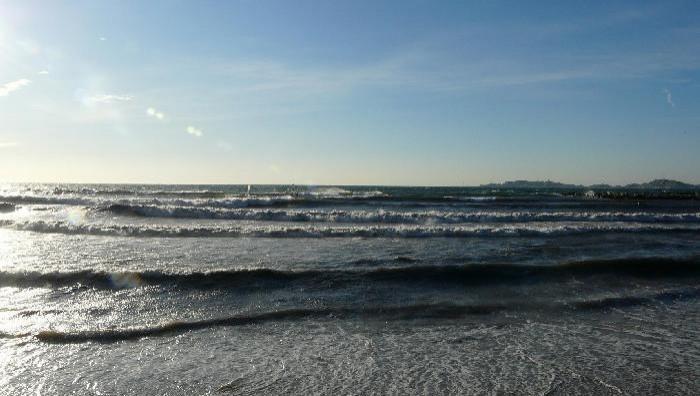 Surf report Le Prado - France (13) 2009-01-14 16:00:00
