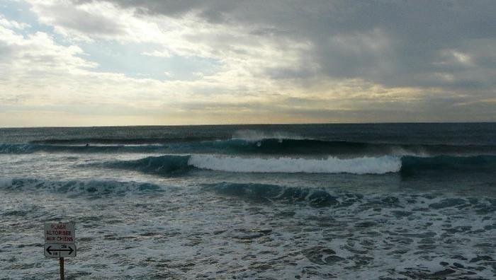 Surf report Sausset-les-Pins - L'Hermitage - France (13) 2009-01-20 12:00:00