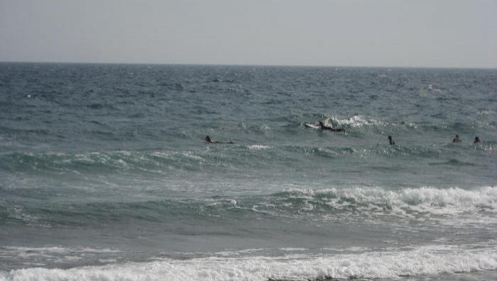Surf report Sausset les Pins - Plage du Port - France (13) 2009-05-10 15:00:00