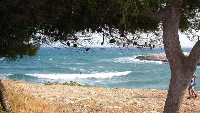 Surf report La Couronne - France (13) 2009-07-14 18:00:00