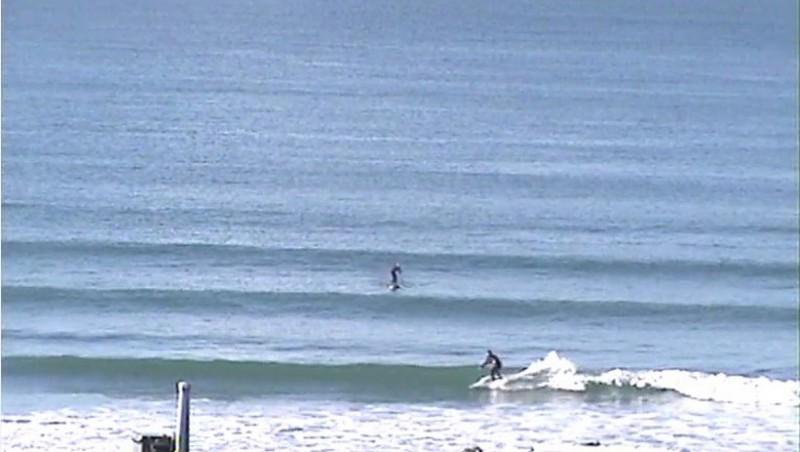 Surf report Le Rozel - France (50) 2009-11-09 11:00:00