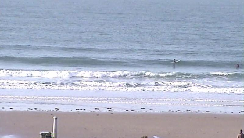 Surf report Sciotot - France (50) 2009-12-10 12:00:00