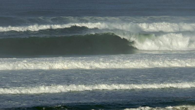 Surf report Seignosse - Les Bourdaines - France (40) 2009-01-14 12:00:00