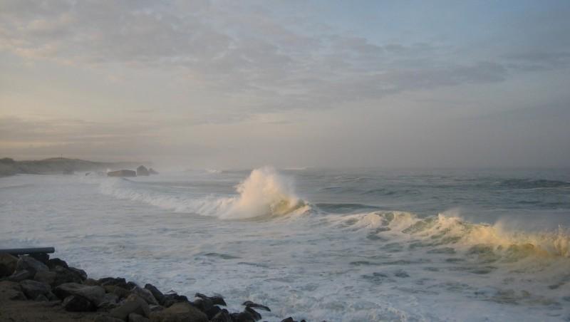 Surf report Capbreton - Le Santosha - France (40) 2009-01-16 12:00:00