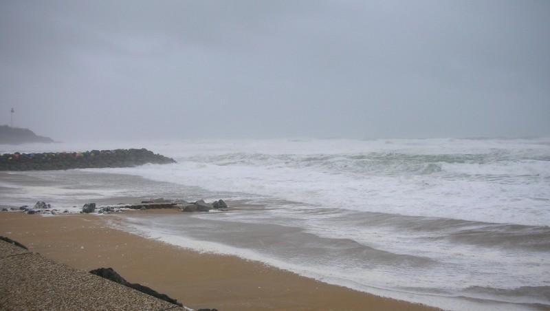 Surf report Anglet Sables d'Or - France (64) 2009-01-24 12:00:00