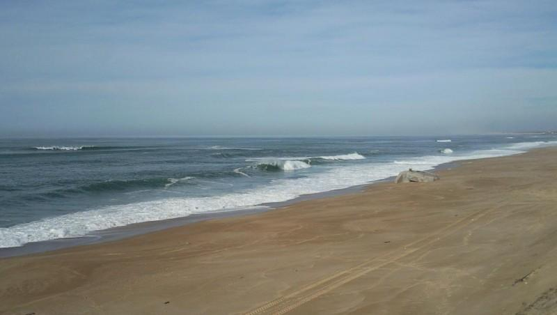 Surf report Labenne - la chapelle - France (40) 2009-01-30 12:00:00