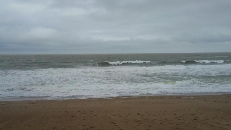 Surf report Anglet Sables d'Or - France (64) 2009-01-31 12:00:00
