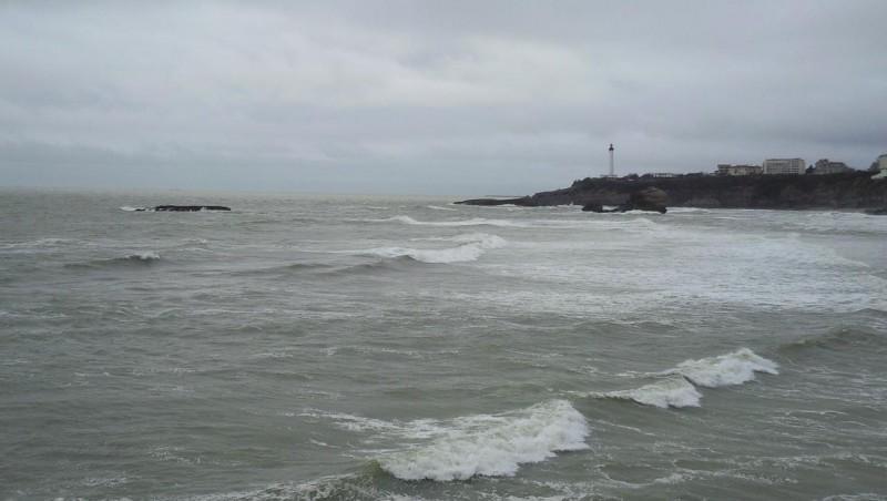 Surf report Biarritz - Grande Plage - France (64) 2009-01-31 12:00:00