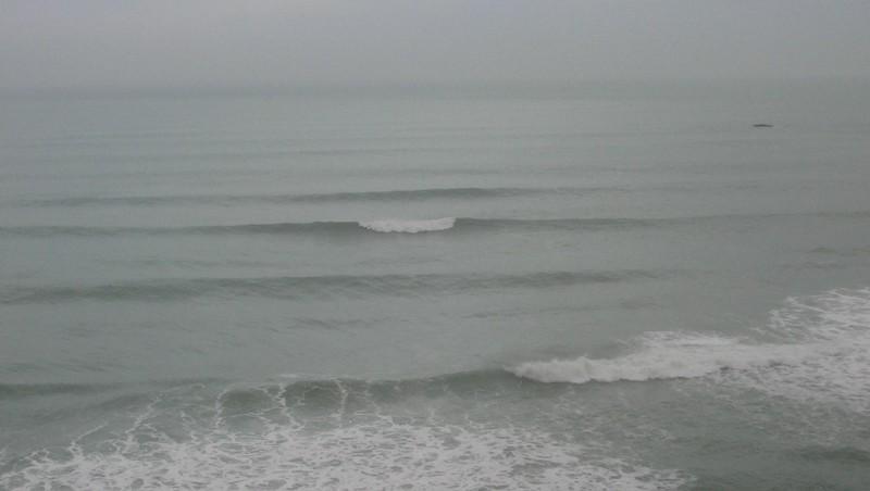 Surf report Côte des Basques - France (64) 2009-01-31 12:00:00