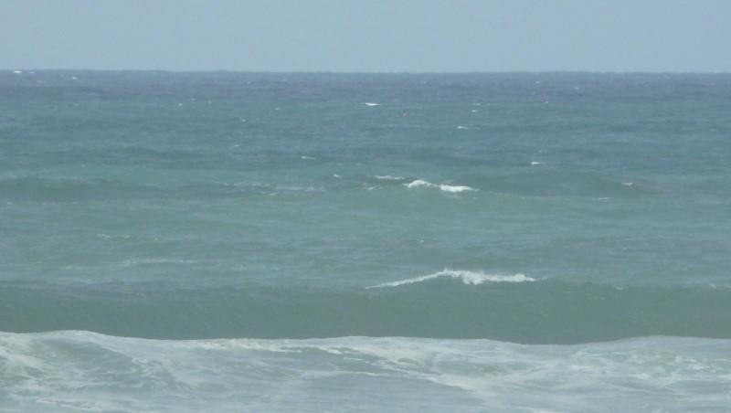Surf report Mimizan - Plage Sud - France (40) 2009-05-19 12:00:00