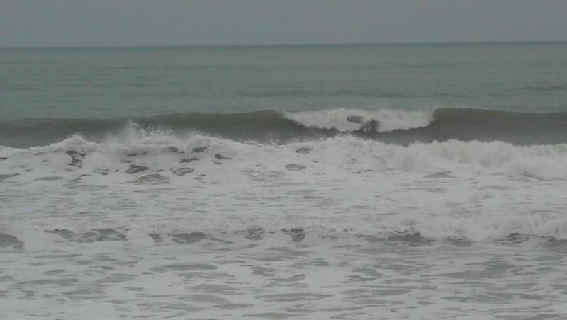 Surf report Grand Village - France (17) 2009-05-28 12:00:00