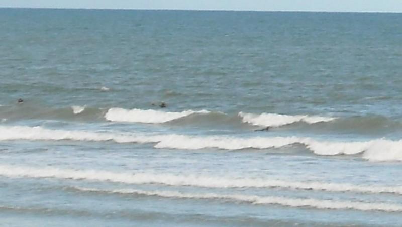 Surf report Grand Village - France (17) 2009-07-06 12:00:00