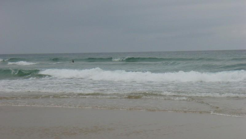 Surf report Seignosse - Les Casernes - France (40) 2009-07-07 12:00:00