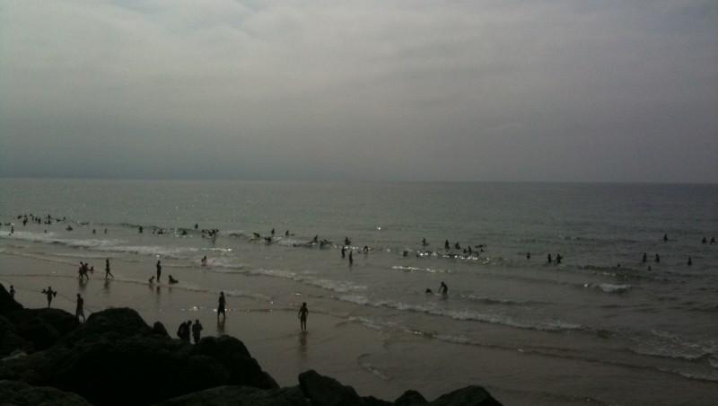 Surf report Côte des Basques - France (64) 2009-08-16 16:26:00