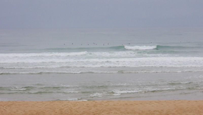 Surf report Seignosse - Les Casernes - France (40) 2009-08-21 09:00:00