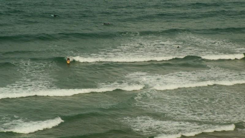 Surf report Côte des Basques - France (64) 2009-09-16 11:00:00