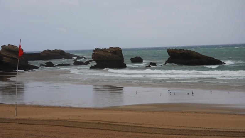 Surf report Biarritz - Grande Plage - France (64) 2009-09-19 10:30:00