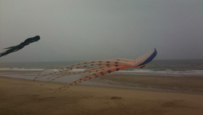 Surf report Hourtin Océan - La Centrale - France (33) 2009-09-20 11:00:00