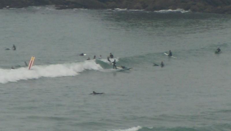 Surf report Côte des Basques - France (64) 2009-09-22 11:45:00