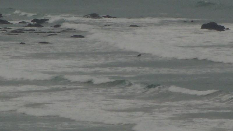Surf report Marbella - France (64) 2009-09-22 11:40:00