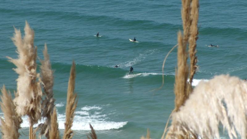 Surf report Côte des Basques - France (64) 2009-09-26 14:00:00
