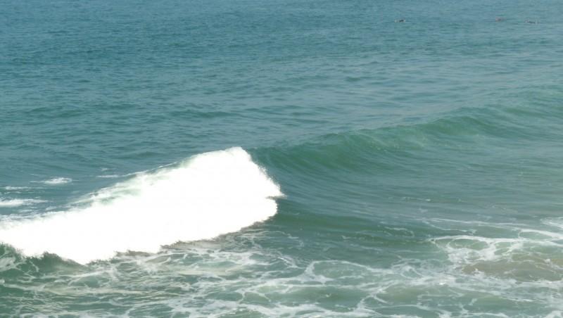 Surf report Biarritz - Grande Plage - France (64) 2009-09-29 16:00:00