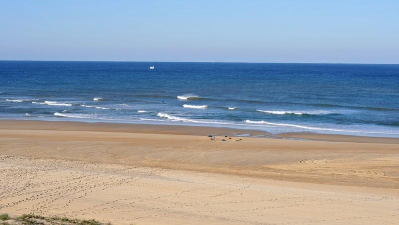 Surf report Seignosse - Les Bourdaines - France (40) 2009-10-15 05:00:00