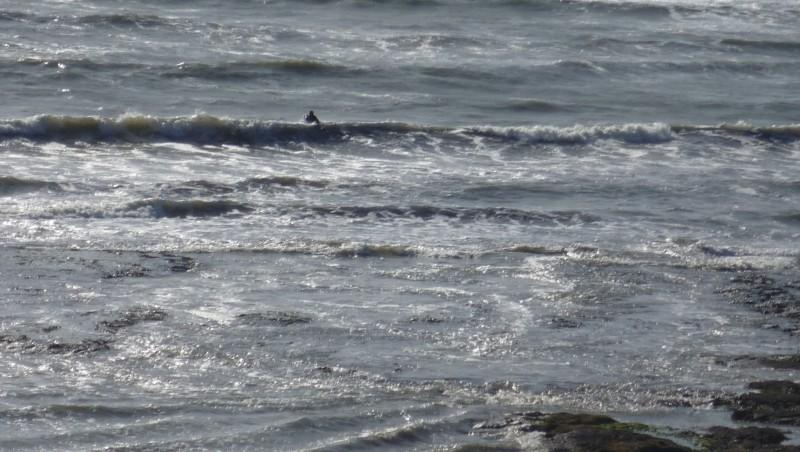 Surf report L'Anse du Sud - France (44) 2009-10-21 15:00:00