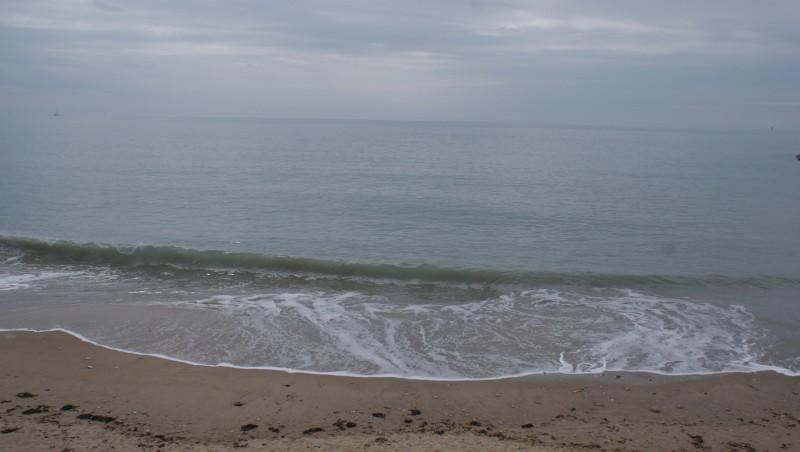 Surf report La Rochelle - Chef de Baie - France (17) 2009-10-31 14:00:00