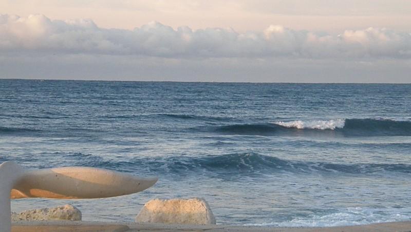 Surf report Sausset les Pins - Plage du Port - France (13) 2009-11-08 07:30:00